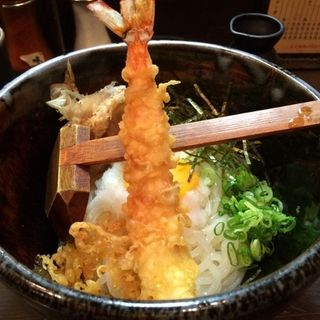 おろし天ぷらうどん(ぬま田や)