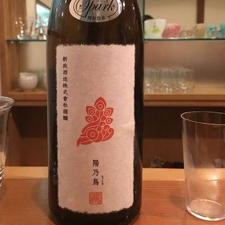 日本酒 新政 陽乃鳥スパーク(日本酒バー 雲レ日)