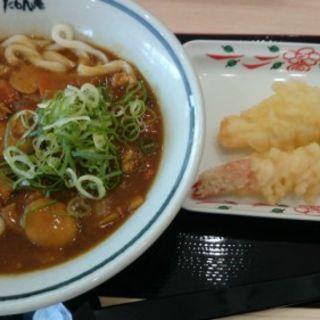カレーうどん(たもん庵  津久野店 )