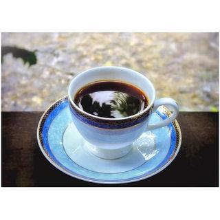 マラウィ(自家焙煎珈琲店 COFFEE iPPO (カフェ イッポ))