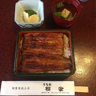 うなぎ重箱(うなぎ 桜家 (さくらや))