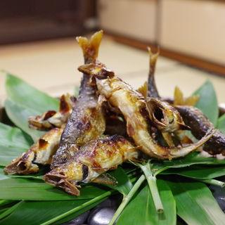 ―日本有数の清流「高津川」を巡る美食旅―