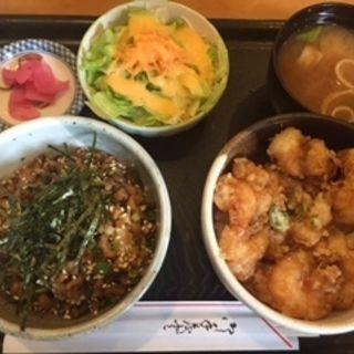 ミニ仲良し丼(菜の花亭 )