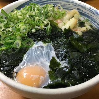 ごぼう天うどん(月見・わかめトッピング)(天ぷらうどん)