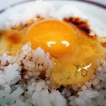 石本農場真卵の玉子かけご飯