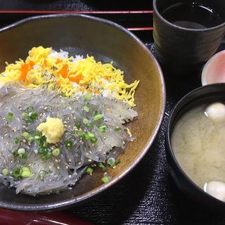 生しらす丼(江の島ハルミ食堂)