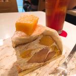 マンゴーと桃のズコット ケーキセット