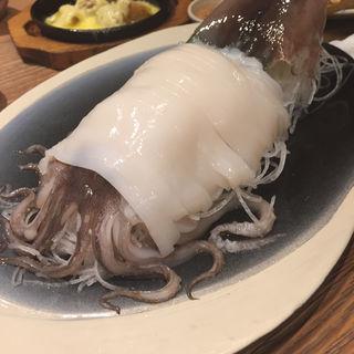 函館のイカ刺し(北海道シントク町 塚田農場 梅田茶屋町店 )
