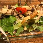 グリルチキンとキノコのサラダ