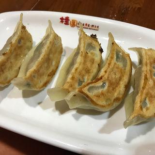 焼き餃子(桂園 御茶ノ水店 )
