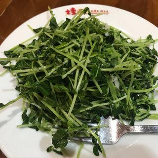 トウミョウ炒め(桂園 御茶ノ水店 )
