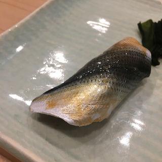 コハダ(和田上 (わたがみ))