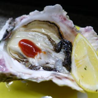 天然岩牡蠣(山CHAN (ヤマチャン))
