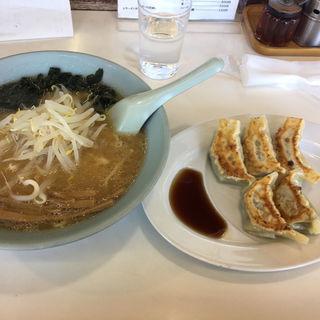 味噌ラーメンと餃子(ひまわりラーメン )