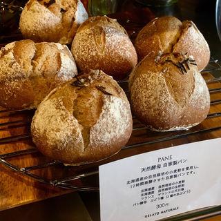PANE 天然酵母 自家製パン(GELATO NATURALE(ジェラート ナトゥラーレ))