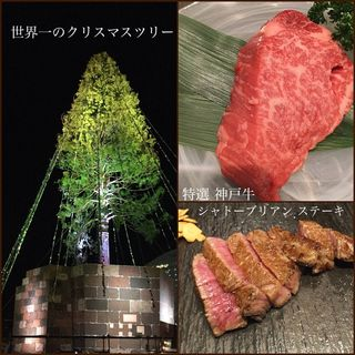 特選神戸牛シャトーブリアンステーキコース(神戸牛ステーキ彩ダイニング )