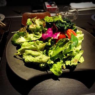 酵素たっぷり有機野菜盛り(お好み焼き まっか 中目黒店 )