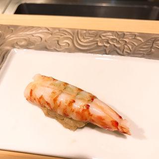 おまかせコース(鮨 光史郎)