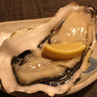 殻付き牡蠣(阿古 )