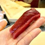 鮪中トロ(初音鮨 (はつねすし))