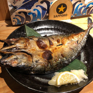 中とろさばのひらき 塩焼き(SABAR 神戸元町店 (サバー))