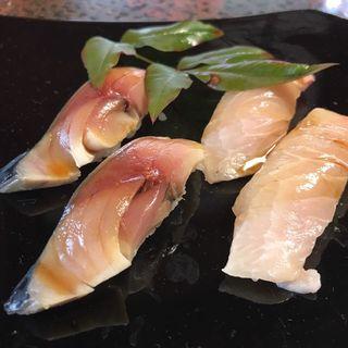 鯖とメカジキ(陸女鮨 )