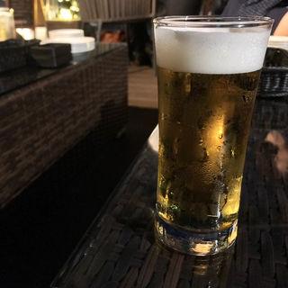 生ビール(UTAMARO (ウタマロ))