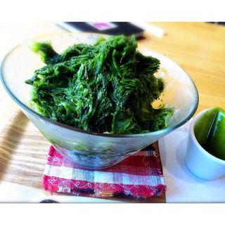 抹茶のかき氷(K's cafe (ケーズカフェ))