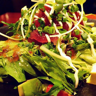 マグロのサラダ(アジト リュクス (ajito luxe))