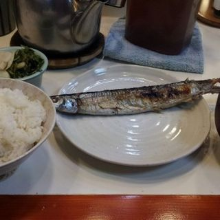 日替わり(サンマ定食)(お食事お魚の店 三門)