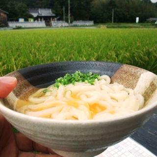 釜玉うどん(がいな製麺所 加西店 )