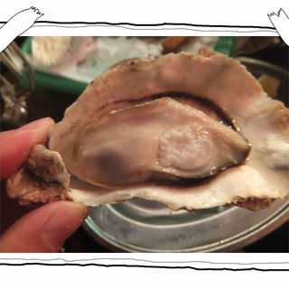 生牡蠣、焼き牡蠣、カキフライが食べ放題!フィーバーセット!(かき小屋フィーバー1111 )