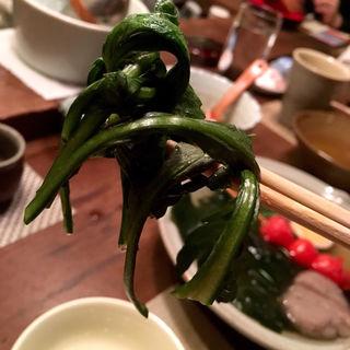 菊菜(馬場頭 ふろ (ババガシラフロ))