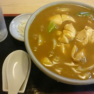 カレー南蛮うどん(かめ壽 本店 )