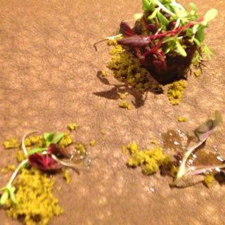 破壊と創造 スッポン 緑茶(フロリレージュ (Florilege))