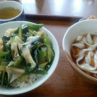 天南丼セット(一力 うどん店 (いちりきうどんてん))