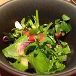 野菜の和サラダ