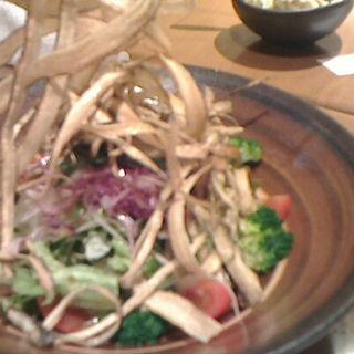 ゴボウサラダ(居酒屋 岡田屋五郎)