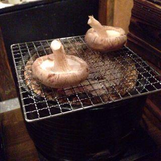 あぶり椎茸(活食・隠れ酒蔵 かけはし)