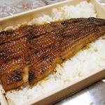 天然鰻弁当