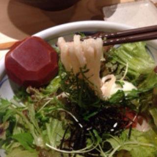 博多明太サラダうどん(冷)(茶ぶ釜 )