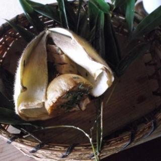 焼き筍(錦水亭 (きんすいてい))