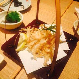 白海老の天ぷら(長谷川 西新橋店 )
