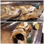 ノドグロの塩焼き(炭魚酒菜 わなか (スミサカナサカナワナカ))