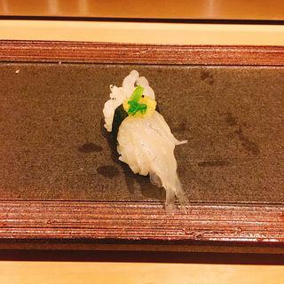白魚の握り(日本橋 (にほんばし))