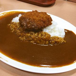 ミンチカツカレー(カレー堂 難波店 (カレードウ))