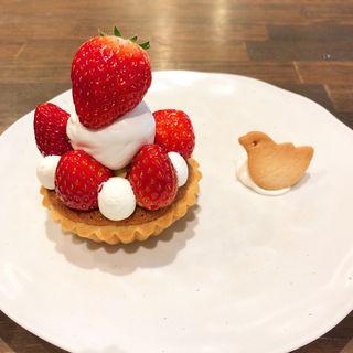 いちごのタルト(トワモワカフェ (towa mowa cafe))