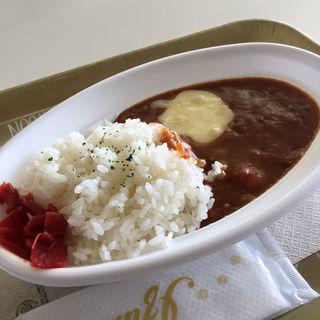 ダ・ヴィンチカレー(カフェサルターレ 名古屋市博物館店)