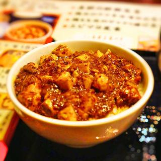 麺ミニ麻婆丼