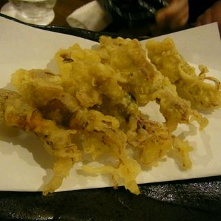 ホタルイカの天ぷら(季節の鍋 縁 (エニシ))